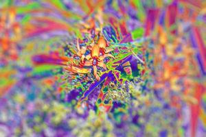 migraine met aura